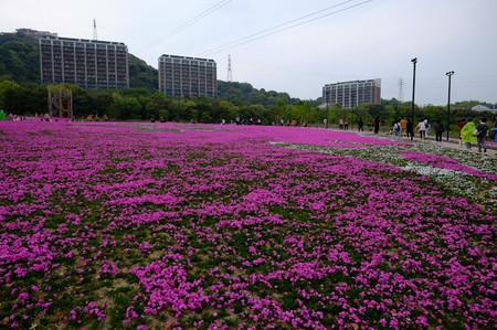 Fujifilm_xt10025614