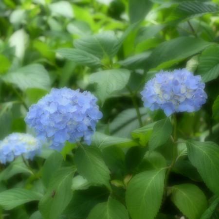 Fujifilm_xt10121435