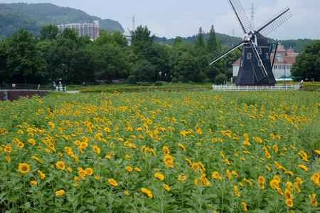 Fujifilm_xt10189735