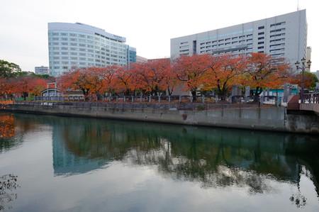 Fujifilm_xt10310414